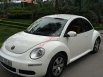 Bán Volkswagen Beetle đời 2010, màu trắng, nhập khẩu chính hãng chính chủ