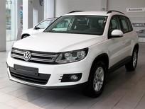 Bán xe Volkswagen Tiguan E đời 2015, màu trắng, nhập khẩu nguyên chiếc