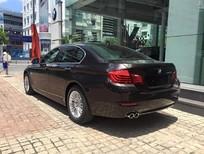 Bán xe BMW 520i LCi đời 2015, màu nâu, nhập khẩu nguyên chiếc