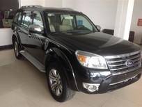 Cần bán lại xe Ford Everest sản xuất 2009, màu đen