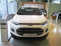 Cần bán Ford EcoSport đời 2016, màu trắng