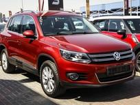 Cần bán xe Volkswagen Tiguan 2.0 TSI 4 Motion 2016, màu đỏ, nhập khẩu nguyên chiếc