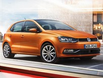 Giá Bán xe Volkswagen Polo E 2016, nhập khẩu chính hãng