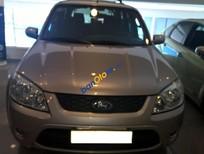 Bán ô tô Ford Escape XLT AT 2010 đời 2010, màu vàng, giá 565tr