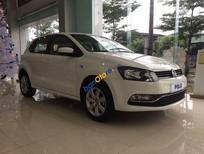 Cần bán xe Volkswagen Polo  6AT đời 2016, màu trắng, nhập khẩu chính hãng