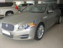 Tín Phát Auto cần bán gấp Jaguar XJ series L sản xuất 2010, màu vàng, nhập khẩu