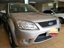Bán Ford Escape XLT 2010, màu bạc, 2 cầu điện