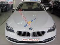 Auto Trúc Anh bán BMW 5 Series 520i sản xuất 2015, màu trắng, nhập khẩu