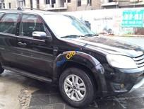 Cần bán lại xe Ford Escape 2010, màu đen chính chủ