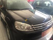 Cần bán Ford Escape đời 2010, màu đen