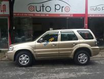 Bán Ford Escape 2.3L đời 2004, màu vàng chính chủ