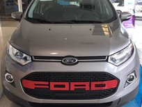 Bán xe Ford EcoSport Titanium AT đời 2016, màu xám, nhập khẩu chính hãng, giá chỉ 615 triệu