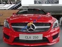 Bán xe Mercedes 250 AT đời 2016, màu đỏ, giá cạnh tranh