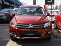 Volkswagen Tiguan 2.0 TSI đời 2016, nhập khẩu Đức, nhiều màu, giao xe ngay, hỗ trợ trả góp