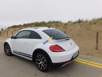 Cần bán xe Volkswagen New Beetle đời 2016, màu trắng, nhập khẩu chính hãng
