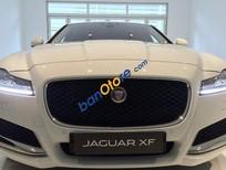 Bán ô tô Jaguar XF đời 2016, màu trắng, nhập khẩu chính hãng