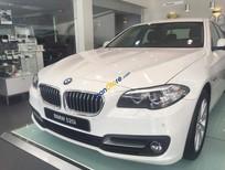 Bán BMW 520i đời 2016, màu trắng, nhập khẩu