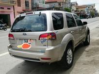 Bán ô tô Ford Escape XLT đời 2008, màu vàng đẹp như mới