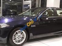 BMW 520i, màu xanh cực hiếm, giao ngay kèm trước bạ