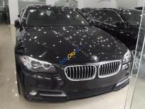 Cần bán xe BMW 5 Series 520i đời 2014, màu đen, xe nhập