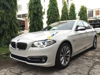 Bán ô tô BMW 5 Series đời 2016, màu trắng, nhập khẩu nguyên chiếc, ưu đãi trước bạ