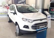 Ford EcoSport Trend AT năm 2016, màu trắng, giá bán thương lượng