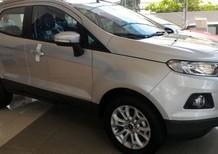Cần bán xe Ford EcoSport Titanium năm 2016, màu bạc