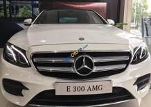 Cần bán xe Mercedes E300 AMG đời 2016, màu trắng, xe nhập hỗ trợ 80% giao xe nhanh