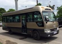 Cần bán xe Hyundai County Limosine thân dài 2017, nhập khẩu chính hãng