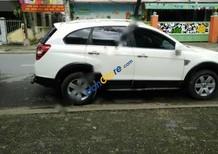 Cần bán lại xe Chevrolet Captiva LT đời 2008, màu trắng chính chủ