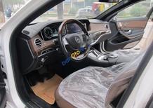 Cần bán gấp Mercedes S500 đời 2015, màu trắng số tự động