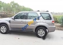 Bán Ford Escape XLS 2.3AT đời 2009, màu bạc số tự động, 495tr