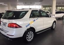 Cần bán Mercedes GLE400 đời 2017, màu trắng, xe nhập