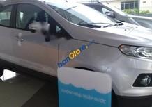 Bán xe Ford EcoSport Titanium đời 2017, màu bạc