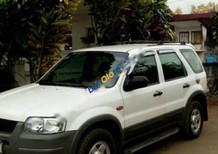 Bán Ford Escape 2.0MT đời 2003, màu trắng, giá 280tr