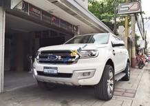 Đại lý chính hãng bán xe Ford Everest Titanium 2.2L nhập Thái Lan, hỗ trợ trả góp 80% tại Bắc Giang