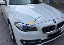 Bán BMW 5 Series 520i sản xuất 2014, nhập khẩu chính chủ