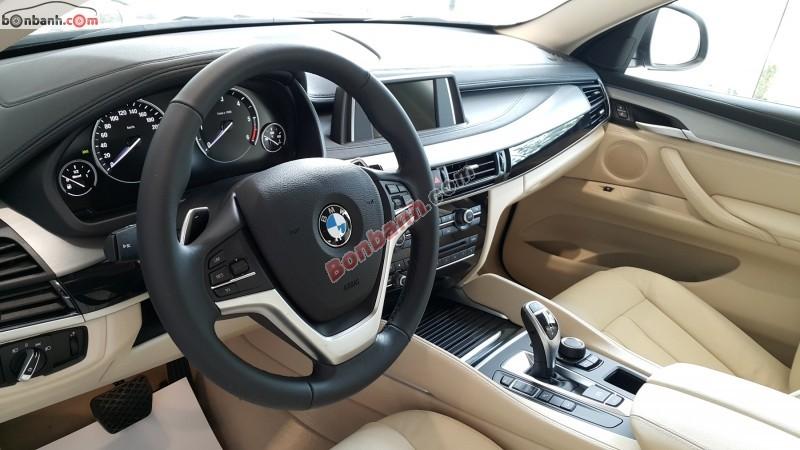 Xe BMW X6 xDrive30d 2015