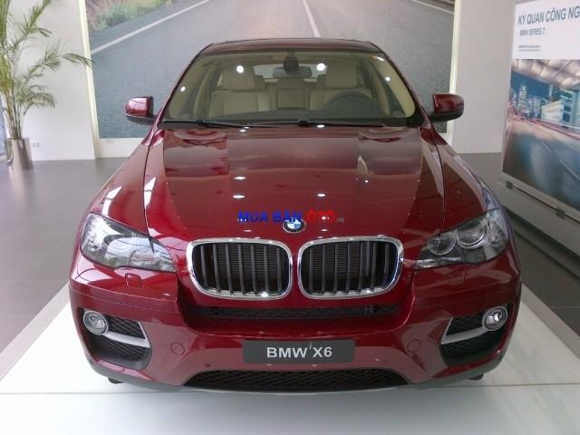 Xe BMW X6 2014 2014