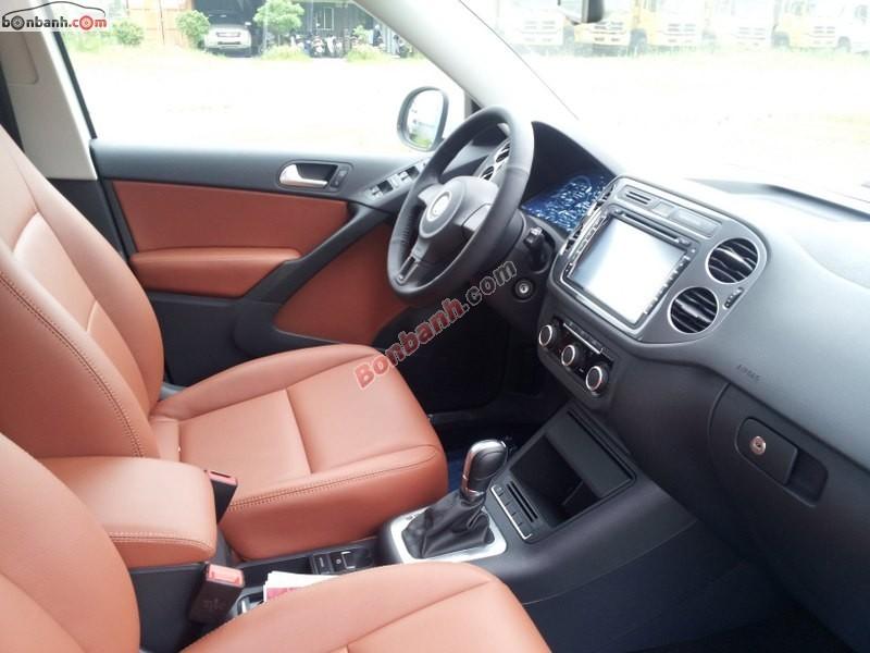 Xe Volkswagen Tiguan  2013