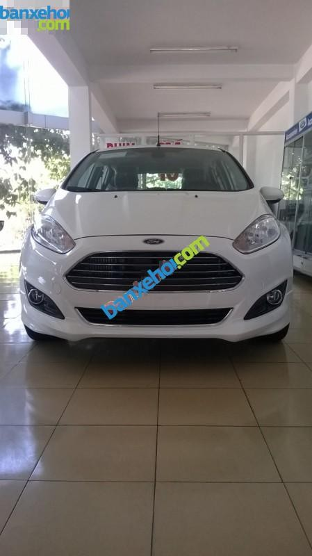 Xe Ford Fiesta Ecoboost 2015