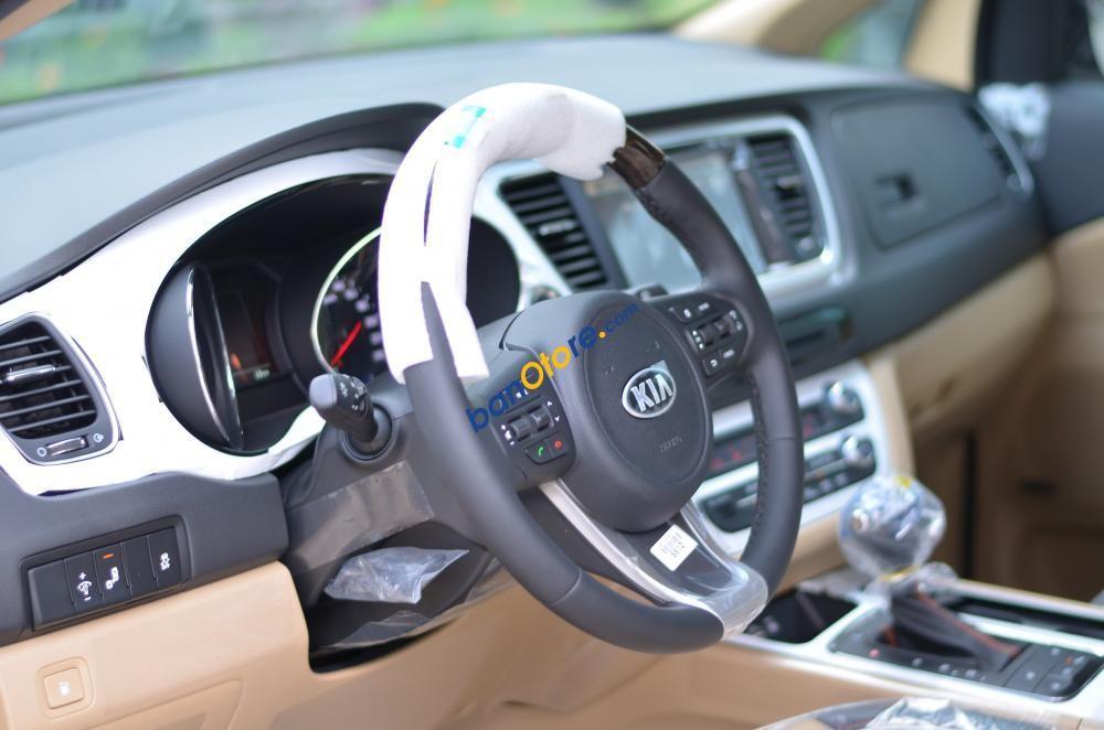 Cần bán xe Kia Sedona năm sản xuất 2017, màu đỏ