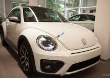VW Beetle Dune 2017, (màu trắng + màu vàng), xe nhập khẩu chính hãng - LH: 0933.365.188
