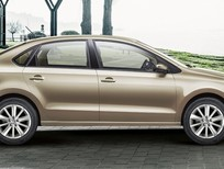 Cần bán xe Volkswagen Polo E 2015, màu nâu, nhập khẩu chính hãng