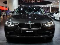 Cần bán xe BMW 3 Series 320i LCi 2017, màu nâu, nhập khẩu