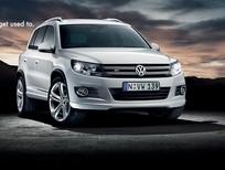 Cần bán Volkswagen Tiguan DA đời 2016, màu bạc, nhập khẩu chính hãng