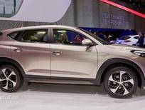 Cần bán xe Hyundai Tucson bản đặc biệt đời 2016, màu nâu, nhập khẩu nguyên chiếc