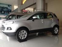 Cần bán Ford EcoSport 1.5 Titanium AT mới tại Điện Biên, màu bạc, giá thương lượng
