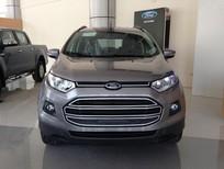 Bán Ford EcoSport 1.5 Titanium AT 2017, màu xám, giá SỐC giao xe ngay