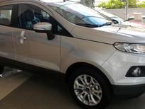 Cần bán xe Ford EcoSport Titanium năm 2017, màu bạc